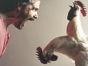 2headchicken